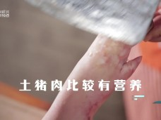 《风物福建》挖掘文脉传承 品味乡情乡味