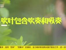 """《风物福建》福州""""元宵"""""""