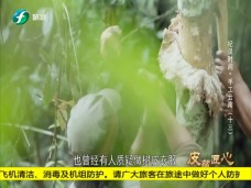 《纪录时间》手工云南(十三)