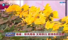《东南晚报》4月6日