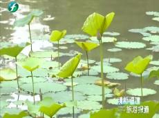 《清新福建旅游报道》平潭至高雄海上客运直航开通