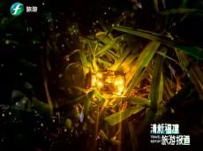 《清新福建旅游报道》福州开展技艺工匠培训