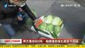 """600吨福建蔬菜驰援武汉人民""""菜篮子"""""""