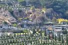 厦门主流墓地每块4万-6万元 并不限购