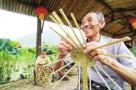 三明:深化林业改革 促进乡村振兴