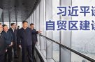 习近平谈自贸区建设