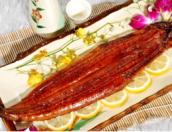 入秋啦,尝尝美味的长乐鳗鱼吧!