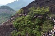 全省首个茶旅小镇落户武夷山