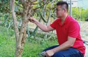 台湾青年蔡志阳:我在大陆当科技特派员