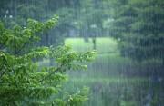 """受臺風""""木恩""""登陸影響 福建部分地區有大暴雨"""