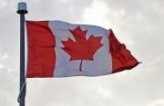 外交部:一加拿大公民因涉毒被拘留