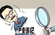 厦门市总工会党组成员、巡视员杨中华被查