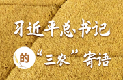 """习近平总书记的""""三农""""寄语"""