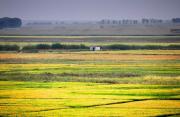 农业农村部公布2020年上半年农资执法10大典型案例