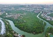 持续提升福建生态文明建设水平