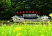 福建省旅游集散中心联盟在龙岩古田成立