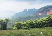 第十四届中国茶业经济年会在武夷山开幕