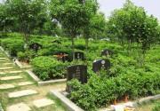 福清树立文明殡葬新风 明年底村村都有生命公园