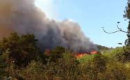 千人救援!广东佛山突发山火,福建森林消防已抵达
