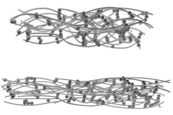 康之园 海芋花矢量图 > 海芋第2张图片  海芋第2张图片 宽560×393高