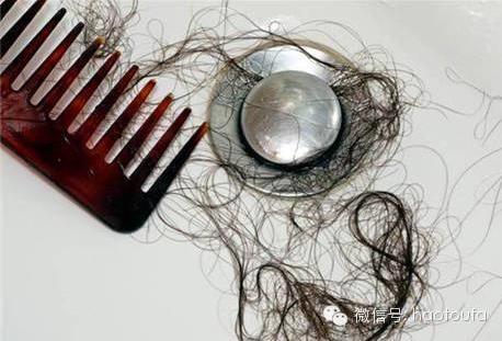排水管的头发