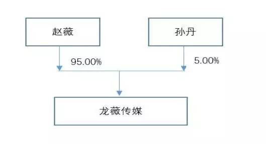 文化的股权结构是