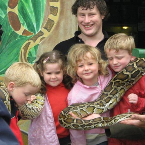 孩子们在动物园中参加活动。(图片来源:Animalarium Borth Zoo)