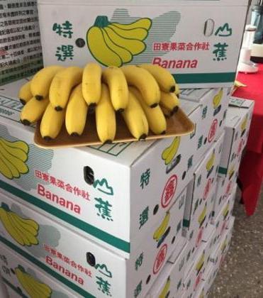 """香蕉价格低迷,为了抢救蕉价,""""立委""""曝台军已经连续吃了2个月香蕉。图片来源:台湾联合新闻网。"""