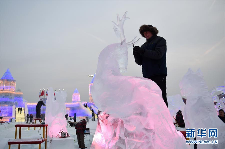 (文化)(4)冰雕炫彩