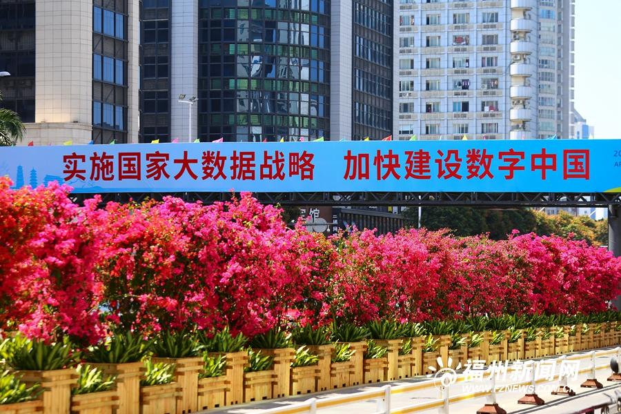 福州街头花团锦簇 喜迎数字中国建设峰会
