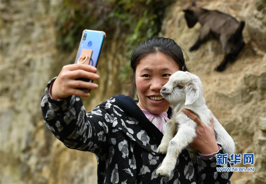 """(脱贫攻坚·图片故事)(1)昔日贫困户 今日女""""羊倌"""""""