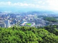 武平县持续深化集体林权制度改革