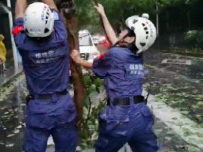 漳州:逆风前行的动人身影