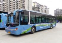 榕春节前投用276辆纯电动公交