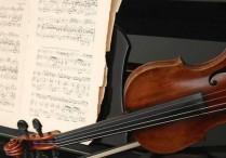 澳音乐家榕城举办音乐会