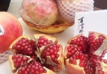 西安精品水果在榕展示推介