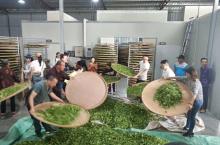 柘荣:创新农民教育培训途径 助力乡村振兴