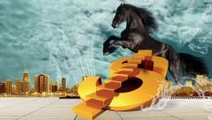 财经961:寻找价值投资的黑马