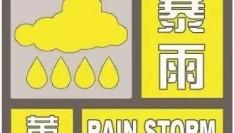 暴雨黄色信号又来了!你那里会下暴雨吗?
