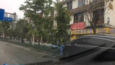 突发!福建医大附一医院门口SUV冲上绿化带!树和路牌都被撞倒……
