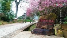 """福建金牌旅游村丨被誉为""""客家庄园""""的连城培田村"""
