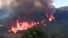 三明尤溪山林发生大火!持续燃烧八九个小时