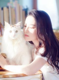 刘亦菲暖阳下慵懒撸猫