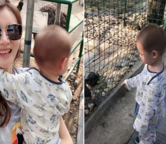 """谢杏芳带儿子逛动物园 不想""""约会""""被打扰"""