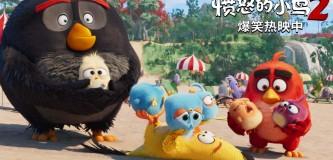 《愤怒的小鸟2》爆笑热映笑料彩蛋齐上阵致敬披头士、大卫鲍伊