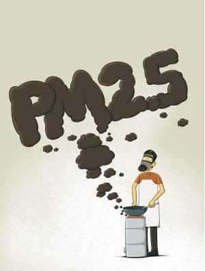PM2.5能堵死肺泡?缺乏证据 言过其实