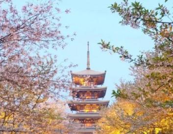 锦绣中国丨一座典型的山水园林城市—武汉