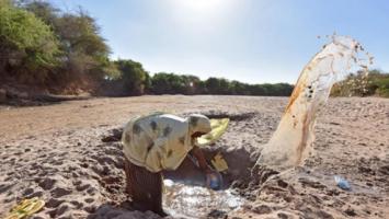 世界防治荒漠化和干旱日:这个日子,需要我们重视!