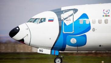 萌!俄罗斯一航空公司飞机变身哈士奇