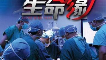 《生命缘》第七季将开播 演员王凯现场无偿献血